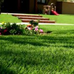 exelgreen-gazon-synthétique-jardin