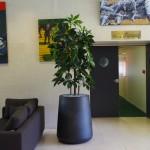 aménagement-intérieur-plante-pot-artificielle-