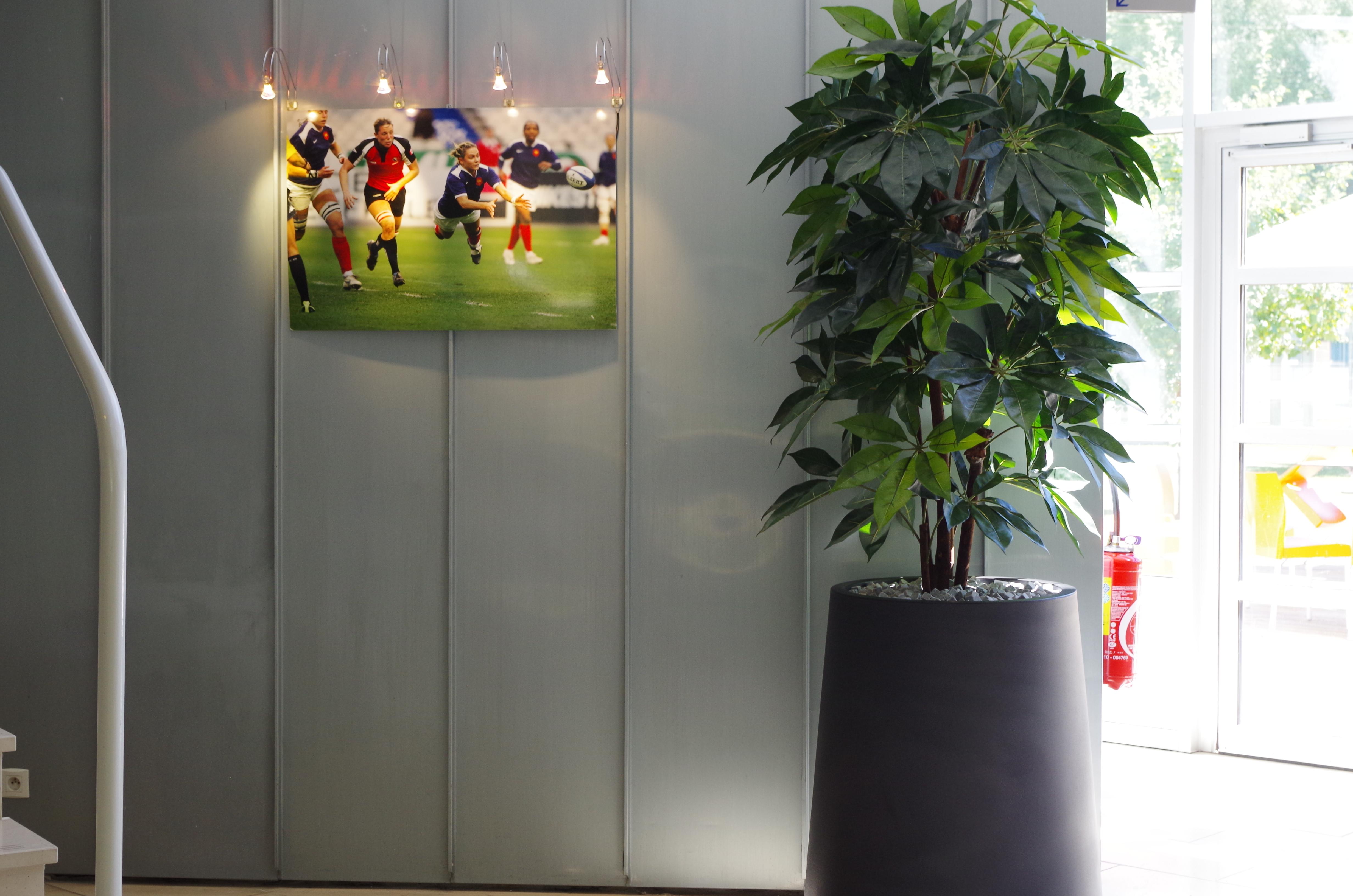 aménagement-intérieur-plante-artificielles