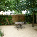 jardin-citadin-mineral-plante-vivace-ombre