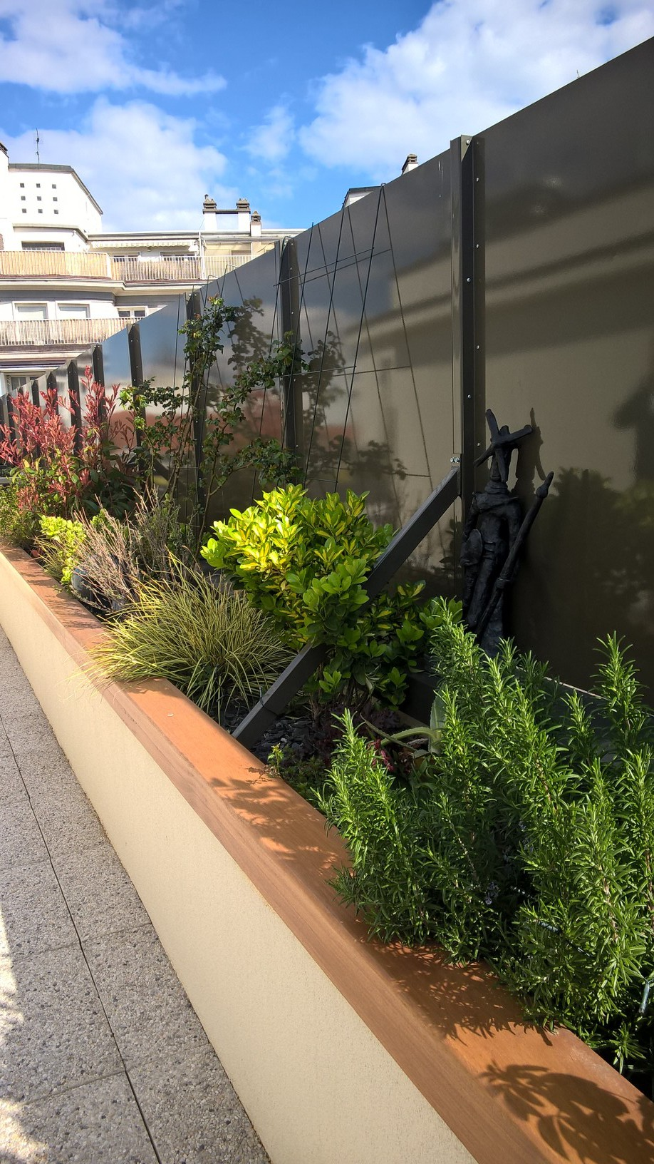 terrasse-arbuste-plante-vivaces